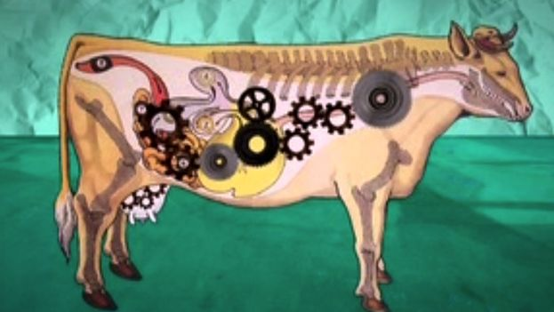 Illustration of a cow. (14ymedio)